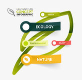 Eco leaf infographic concept Royalty Free Stock Photography