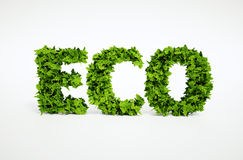 Eco leaf text Royalty Free Stock Photo