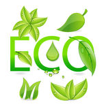 Eco leafs Royalty Free Stock Photos