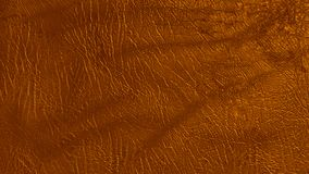 Eco leather amber color texture. Up-close Stock Photos