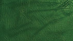 Eco leather deep green color texture. Up-close Stock Photography