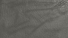Eco leather grey color texture. Up-close Royalty Free Stock Images