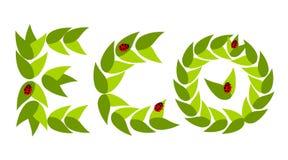 Eco leaves with ladybugs Stock Photography