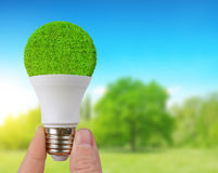 Eco LED bulb in hand. Royalty Free Stock Image