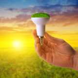 Eco LED bulb in hand at sunset. Stock Images