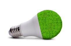 Eco LED bulb isolated Stock Photography