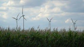 Eco Leistung Windturbinen, die Elektrizität festlegen stock video