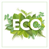 ECO letter with leaves Royalty Free Stock Images