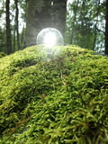 ECO Licht stockfoto