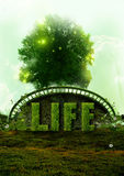 Eco Life and nature concept Royalty Free Stock Photos
