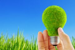 Eco light blub in hand. Energy concept Royalty Free Stock Images