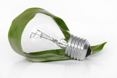 Eco light bulb Stock Photo