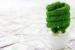 Eco light bulb concept Stock Image