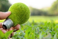 eco light bulb concept Stock Image