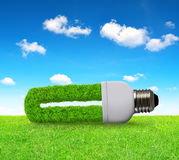 Eco light bulb in grass Stock Images
