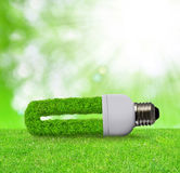 Eco light bulb in grass Royalty Free Stock Photos