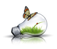 Eco light bulb with grass, a ladybug and a butterfly. Stock Image