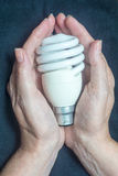 Eco light bulb held in hands Stock Photos