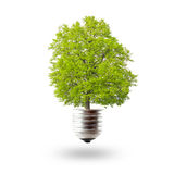 Eco lightbulb Royalty Free Stock Images