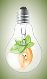 Eco lightbulb Stock Photos
