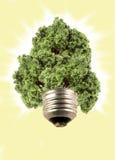 eco lightbulb tree στοκ φωτογραφία