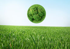 Eco living. Earth in the grass, recycle concept Royalty Free Stock Photo