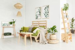 Eco living room. Wooden shelves and plant on pouf in eco living room interior with beige blanket and cushions on settee Stock Photo