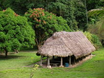 Eco loge i rainforesten arkivfoton