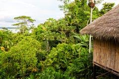 Eco Loge, park narodowy Yasuni Fotografia Royalty Free