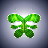 Eco logo butterfly Stock Images