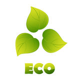 Eco logo - green leaves Stock Images