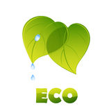 Eco logo - green leaves Royalty Free Stock Photo