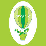 Eco logo, signs or labels. Organic balloon with green leaves Stock Photography