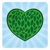 Eco Love Symbol. Eco Love Leaf Symbol Logo Icon Royalty Free Stock Photography
