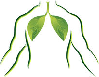 Eco lungs Royalty Free Stock Image