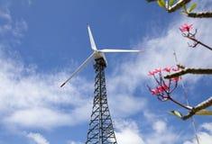 Eco makt, vindturbiner Royaltyfri Fotografi