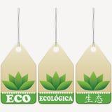 Eco marca muestras con etiqueta Fotografía de archivo libre de regalías