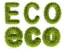 Eco met groen gras Stock Afbeeldingen