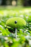 Eco musbegrepp Royaltyfri Foto
