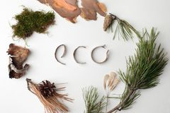 Eco natural organic text from forest deteails on white background, eco-friendly, ecology lettering, earth day creative idea royalty free stock photography