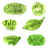 Eco, nature, vegan, bio food logos. Handwritten lettering. Vector elements for labels Royalty Free Stock Photos