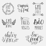 Eco, nature, vegan, bio food logos. Handwritten lettering. Vector elements for labels, logos, badges, stickers or icons. Calligrap Stock Photos