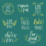 Eco, nature, vegan, bio food logos. Handwritten lettering. Vector elements for labels, logos, badges, stickers or icons. Calligrap Royalty Free Stock Photos