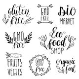 Eco, nature, vegan, bio food logos. Handwritten lettering. Vector elements for labels, logos, badges, stickers or icons. Calligrap Royalty Free Stock Photography