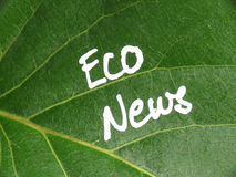 Eco News on green leaf Stock Images