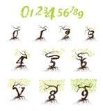 Eco nummerbegrepp med trädformen Arkivbilder