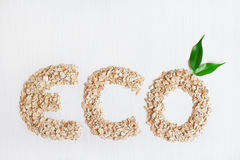 Eco oat-flakes cereals on a white background. With green leaves Stock Photography
