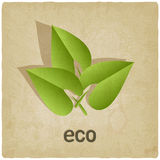 Eco old background Stock Photography