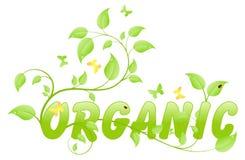 Eco orgánico Fotos de archivo libres de regalías