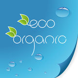 Eco and organic logos. On green background Royalty Free Stock Photos